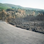 Incendio Campamento Descargamaría 1998