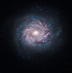 [フリー画像] 自然・風景, 天体・宇宙, 銀河・星雲, 201010260100