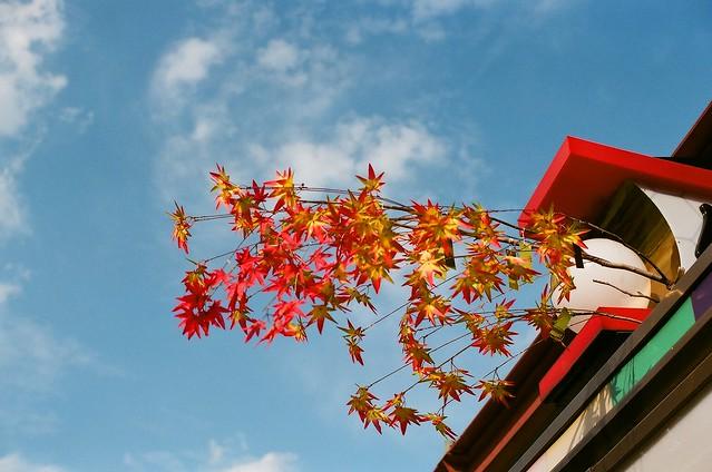Oct.16_淺草寺