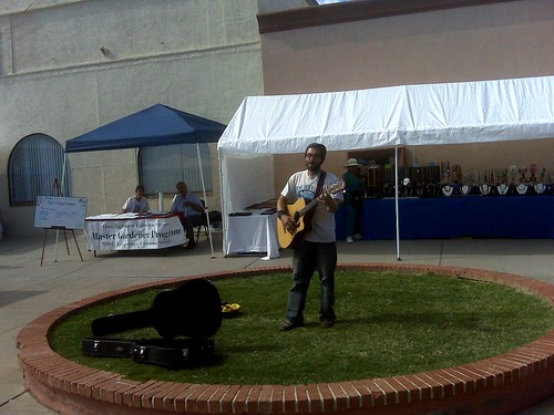 musician at the farmers market