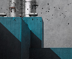 Power Plant  With Crows