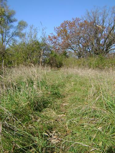 Deer Path
