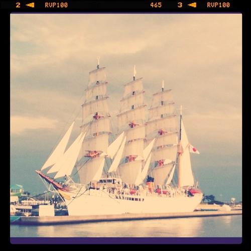 海王丸総帆展帆
