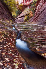 West Fork of Oak Creek (Jake_Case) Tags: longexposure autumn arizona southwest fall fallcolors sedona autumncolors cascades redrocks northernarizona redrock slickrock oakcreekcanyon westfork westforkofoakcreek
