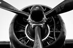 Workhorse (JoelICastaneda) Tags: aircraft wwii airshow bomber propeller warbirds 2010 b24liberator ol927 wingsoverhoustonairshow sunrisephotoop