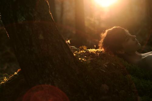 フリー写真素材, 人物, 男性, 森林, 寝顔・寝ている,
