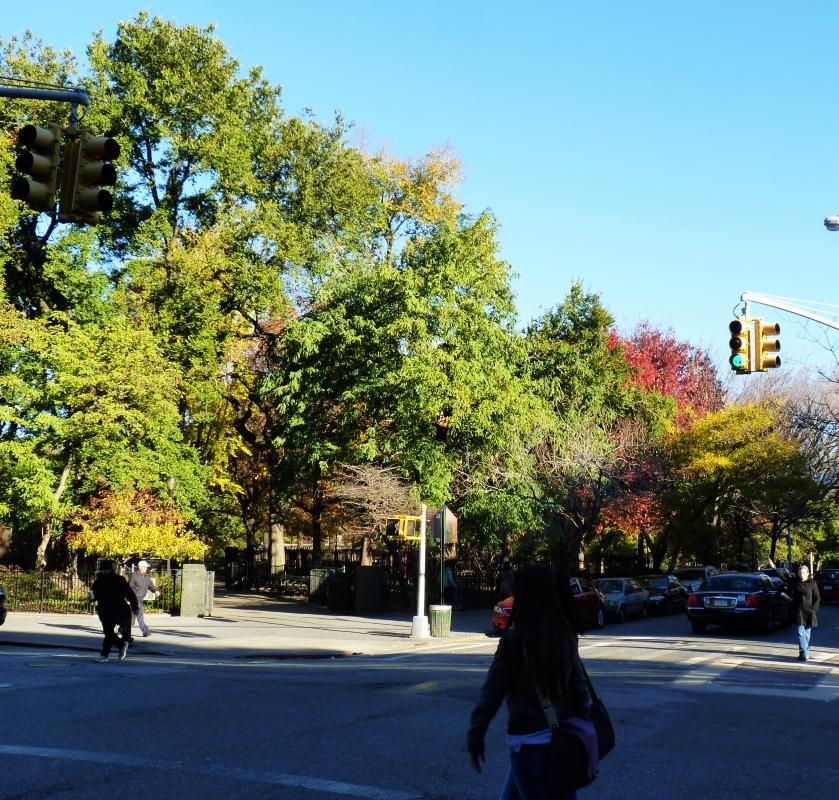 Tompkins Sq. Park - Fall