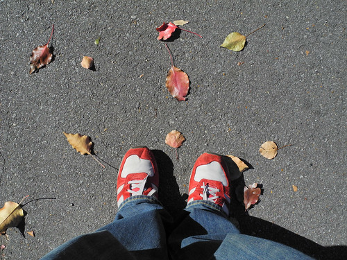 Autumn New Balance Really nice crispness and detail when viewed at 100%.  I