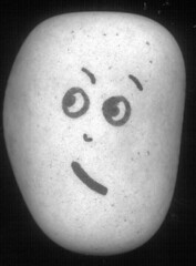 hmmp! (Stone Faces) Tags: silly face rock fun funny rockface odd pebble stoneface stonefaces