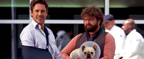 due-date-robert-downey-zach-galifianakis-photo2