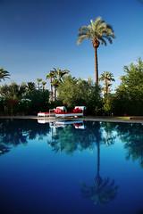 Sexy pool for hot days and nights in Marrakesh Murano Resort (Nite and Room Reporter) Tags: murano sundaybrunch designhotels redpool luxuryhotels sexypool riadsmarrakech orientalnights riadsmaroc sexynights marrakeshhotels marrakeshriads moroccoriads moroccohotels moroccanhotels moroccoresort orientalbrunch