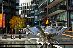 Flame Flower (Matilda Diamant) Tags: city flower oslo norway flame rusalka akerhus