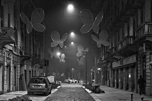 Christmas Butterflies in Milan