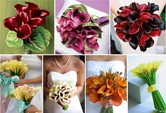 Calla Lily Bridal Wedding Bouquets (One White Dress) Tags: flowers wedding inspiration flower color colour floral beautiful photo pretty lily calla photos theme florist waxy lillies bouquet weddings bridal ideas cala stylish posy centrepiece
