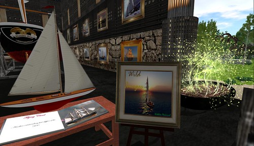 Wildstar's Exhibit at the Bare Rose Art Gallery