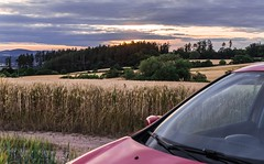Grain field at sunset and car (tomaskriz1) Tags: windshield carhood glass car grain field silhouette yellow orange czech moravian trees tree sunset sunlight sun sky season scene rural reeds outdoors nature natural meadow landscape green grass forest evening colorful cloudy blue beauty beautiful wonderful