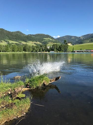 Badesee bei der Pension Glitschnerhof in Aigen im Ennstal