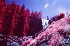 Yosemite Vernal Falls Mist Trail (cris_that1) Tags: yosemitenationalpark vernal falls mist trail waterfall infrared aerochrome infrachrome fpp filmphotographyproject 35mm minolta srt101