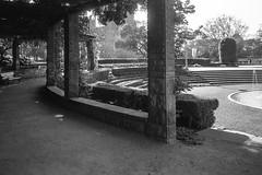 early morning, Hyde Park, Sydney, 2015  #940 (lynnb's snaps) Tags: 2015 35mm hydepark xa bw city film rangefinder street olympusxa fzuiko35mmf28 ilfordfp4 kodakxtoldeveloper sydne morning pergola serene