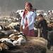 Uyghur girl and boy with sheep