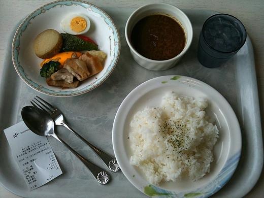 北海道野菜カレー
