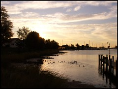 Sunrise Over the Tide Box (photo_secessionist) Tags: winter seascape film analog sunrise 35mm harbor pier quiet asahi pentax ducks maryland calm chesapeake mesuper solomonsmaryland citrit soligorf35452880mmzoommacrolens pentaxart