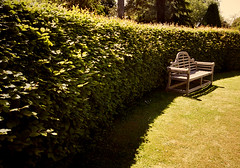 Summer seat and Gloucestershire (archidave) Tags: summer court garden bench warm seat country gloucestershire hedge curve beech frampton opengardens framptononsevern