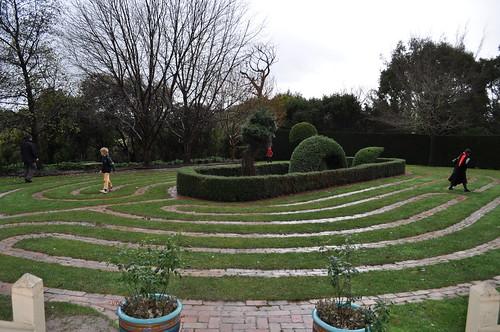 turf maze 3672