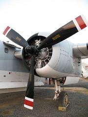 IMG_1196.JPG (arcadian88) Tags: aircraft navy royal thai tracker s2 grumman rtn utapao