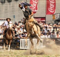 De estirpe gaucha (Eduardo Amorim) Tags: horses horse southamerica caballo uruguay cheval caballos cavalos prado montevideo pferde cavalli cavallo cavalo gauchos pferd hest hevonen chevaux gaucho  amricadosul montevidu hst uruguai gacho  amriquedusud  gachos  sudamrica suramrica amricadelsur  sdamerika jineteada   americadelsud gineteada  americameridionale semanacriolla semanacriolladelprado eduardoamorim iayayam yamaiay semanacriolladelprado2010