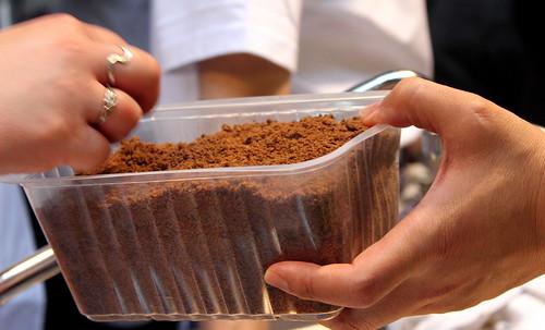 Porcini soil