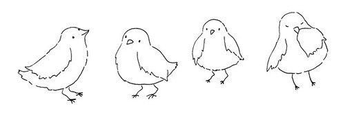 baby birds drawing