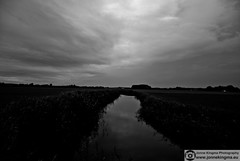 Polder (Just a guy who likes to take pictures) Tags: bw en white black holland reflection blanco nature water netherlands monochrome grass river landscape und aqua wasser europa europe y zwartwit negro natur nederland thenetherlands natuur holanda gras polder zwart wit weiss paysbas schwarz landschap niederlande egmond sloot noord zw the reflectie heiloo weis