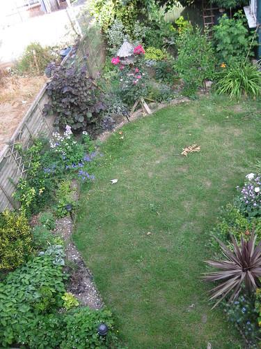 Upper lawn 01/07/2010