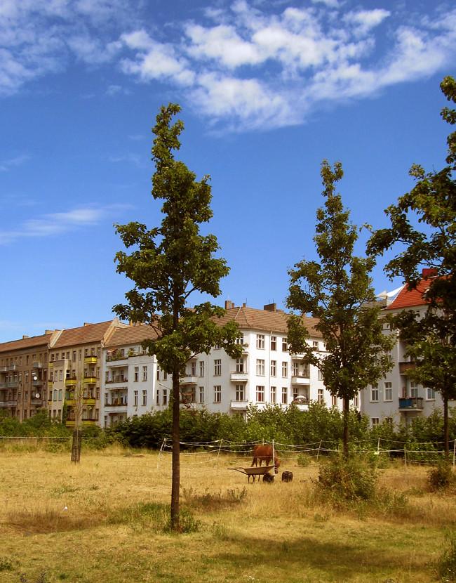 Bauernhof_Berlin_3