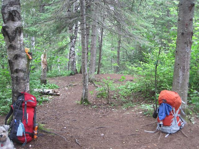 tent room 2
