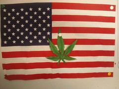 Amerijuanican (STRESSED OUT!) Tags: freedom tags upthepunx weedywomen