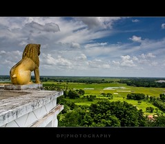 Lion King (DP|Photography) Tags: lion buddhism ashok lionking ashoka peacepagoda shantistupa buddhiststupa dayariver kalingawar dhaulihills dhauligiribhubaneswar bhubaneswarindia emperorashok