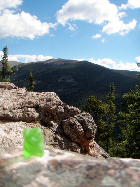 Gummy Bears enjoy views too