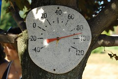 Too Darn Hot (90°F in the Shade)