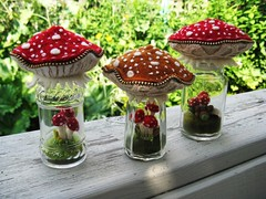 Yesterday's terrarium mushroom pincushions (woolly  fabulous) Tags: red wool mushroom recycled felt pincushion shakers embroidered terrarium saltandpepper frenchknots