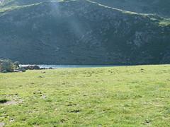 P1030057 (Guillaume CHANCHUS) Tags: suzon pombie ayous peyreget lacsdayous tourdupicdumididossau biousartigue
