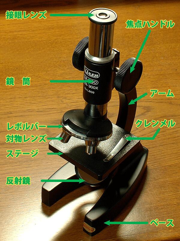 顕微鏡の構造