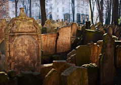 Old Jewish Cemetery (Philipp Klinger Photography) Tags: old friedhof cemetery graveyard nikon republic czech prague tomb prag praha tschechien jewish czechrepublic stary philipp republika klinger ceska jdischer tschechei hrbitov tombstond d700 sigma50mmf14 dcdead vanagram zidovski staryzidovskihrbitov