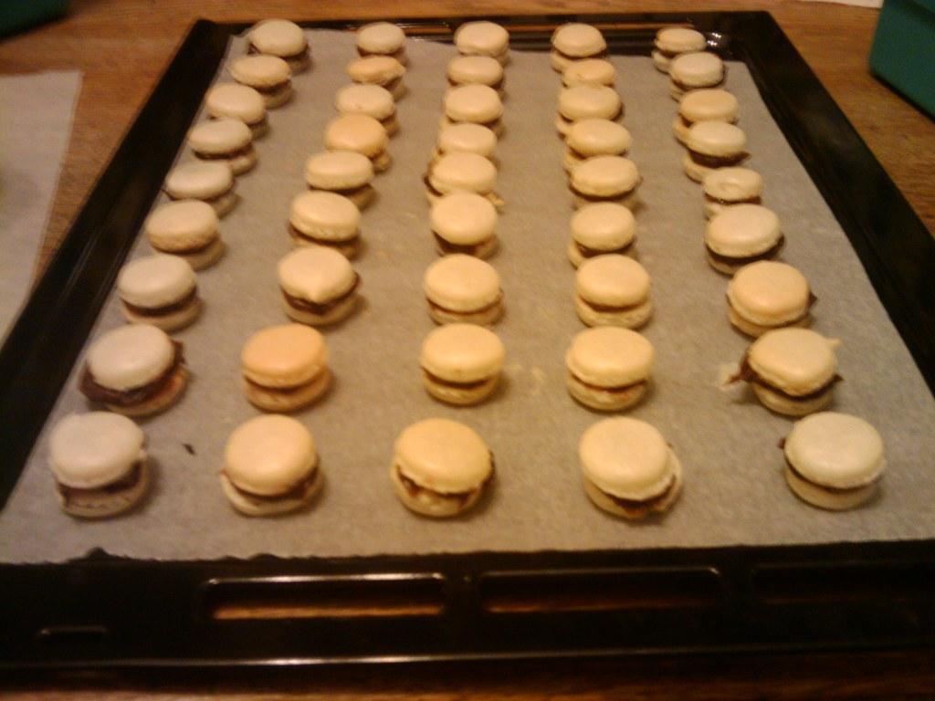 Chocolated Macarons - Far Away