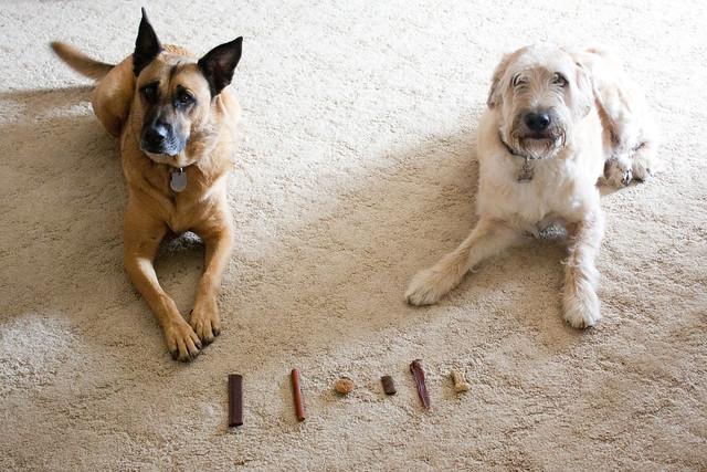 smorgasbord of treats!