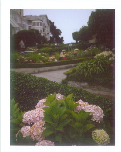 "lombard street-""the world's crookedest street"""