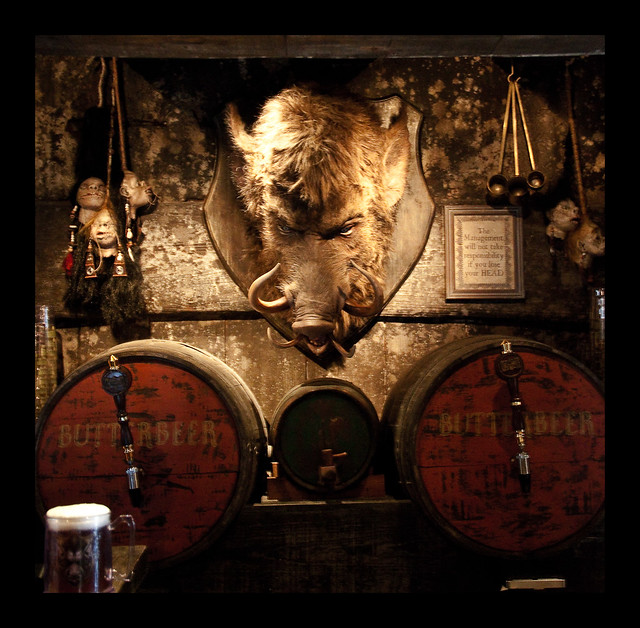 The Wizarding World of Harry Potter: Inside Hog's Head Pub