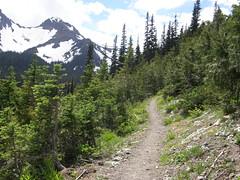 Tubal Cain trail nearing junction to Buckhorn Lake.