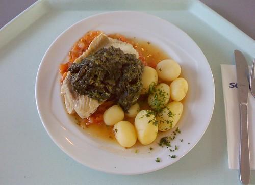 Seelachsfilet im Tomatenbett mit Spinat